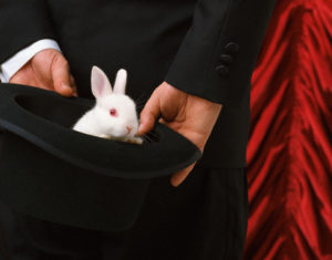 Dan Burns Hands Holding Top Hat with Rabbit, local magician in Salem Oregon